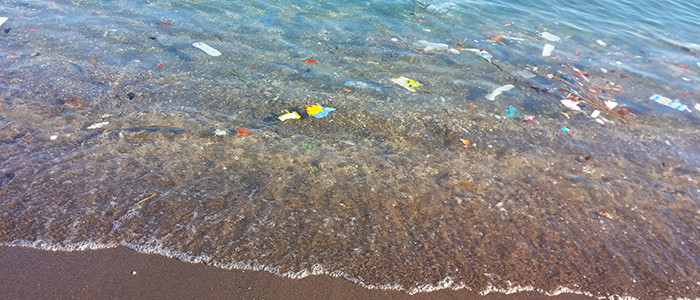 environment and our oceans clean