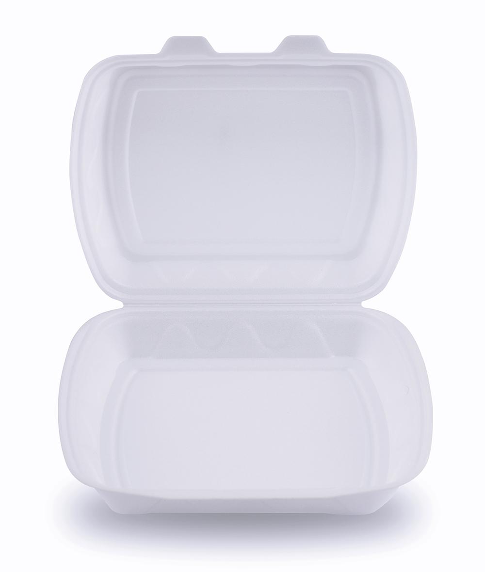 Bans On Styrofoam
